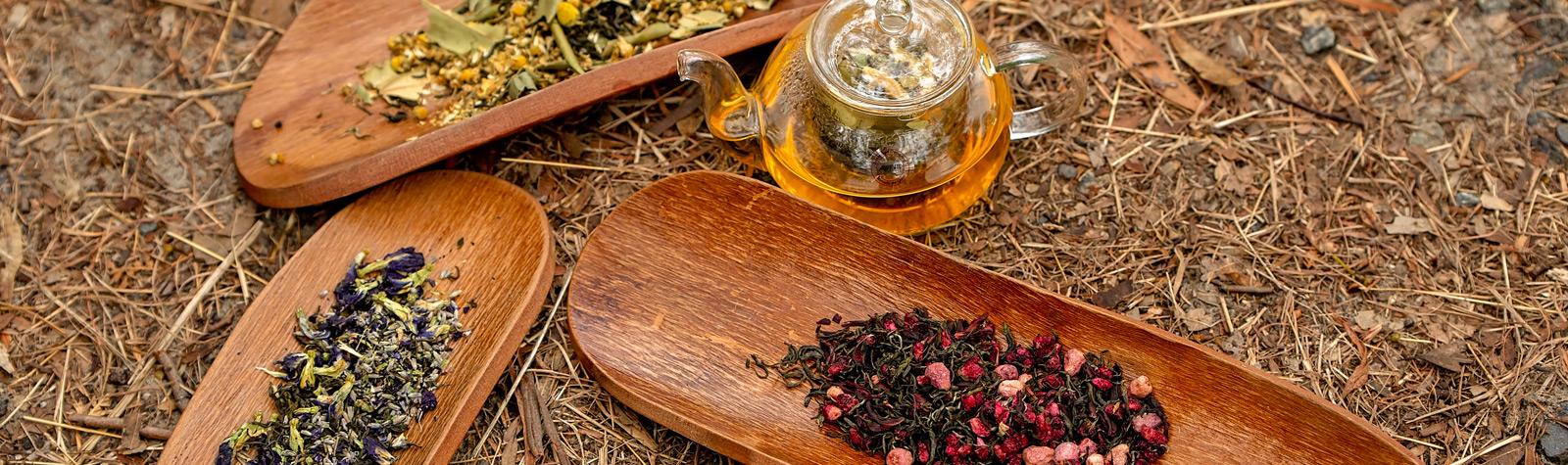 Goanna Hut<br>&<br>T2 Tea